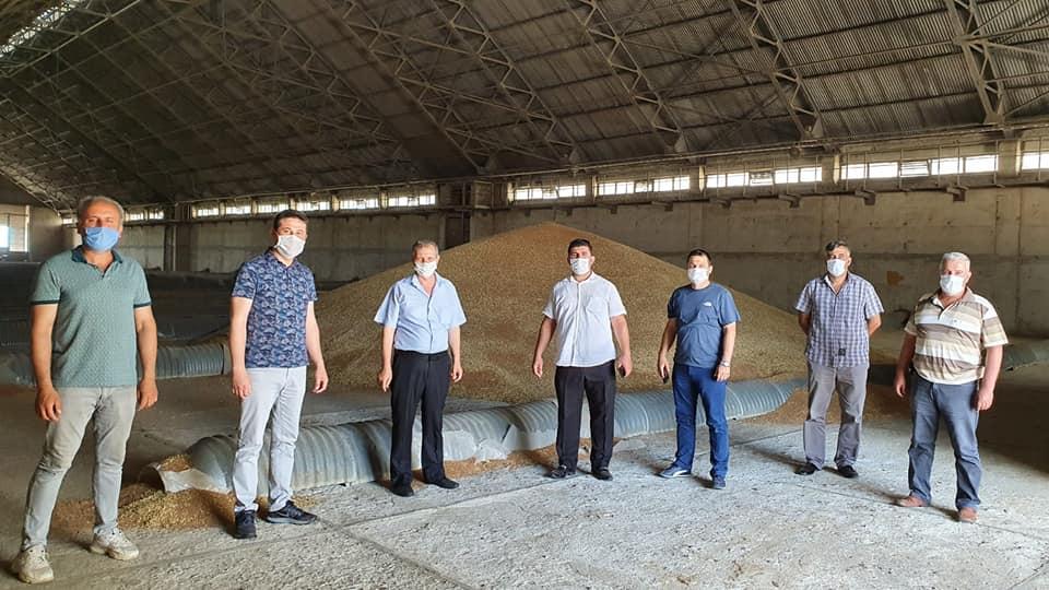 İpsala'da 152 Bin Dönüm Buğday Ekildi.