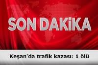 Keşan'da Takla Atan Otomobilin Sürücüsü Hayatını Kaybetti