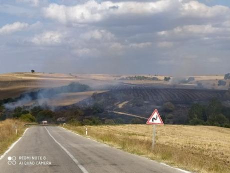İbriktepe'deki Yangın Korkuttu.